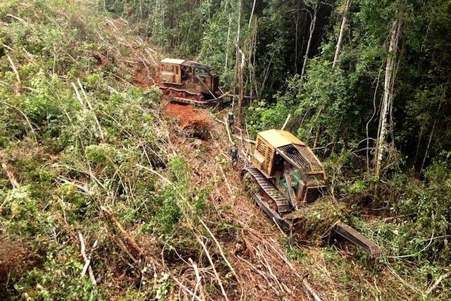 Amazônia teve 73% do desmatamento para garimpo em terras indígenas