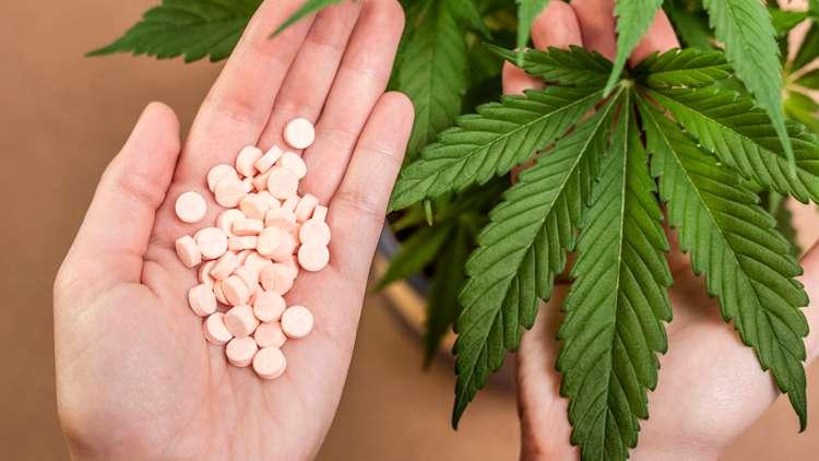Portugal começa a discutir legalização da maconha para fins medicinais