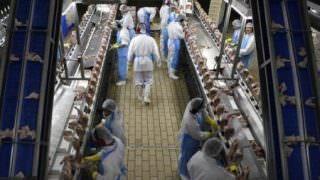 BRF é alvo de nova fase da Operação Carne Fraca