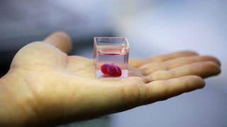 Cientistas criam coração impresso em 3D  a partir de tecido humano