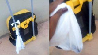 Criança volta de creche com 'sacolinha de cocô' presa à mochila e mãe fica indignada