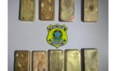 PRF faz apreensão de barras de ouro na BR 174 no Amazonas.