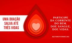 Sua doação de sangue pode salvar até três vidas