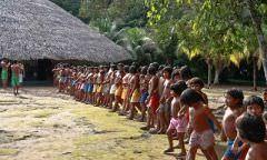 Índios devem ser consultados antes de nova etapa do linhão de Tucuruí