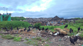 MPE cobra Prefeitura de Parintins sobre lixão a céu aberto