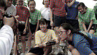 Ilusão de óptica colore foto monocromática e surpreende
