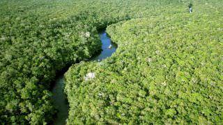 Noruega bloqueia repasse de R$ 133 mi para preservação da Amazônia