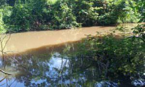 Defensoria apura denúncia de poluição do lago Poraquê em Coari