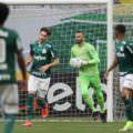 Palmeiras vence o Grêmio e conquista tetra da Copa do Brasil