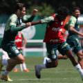 Palmeiras mantém foco no título da Copa do Brasil