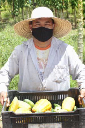 'Kit Agricultura Familiar' beneficia pequenos produtores em Manacapuru