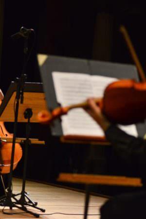 Trio de cordas e percussão da Amazonas Filarmônica abrem as lives de maio
