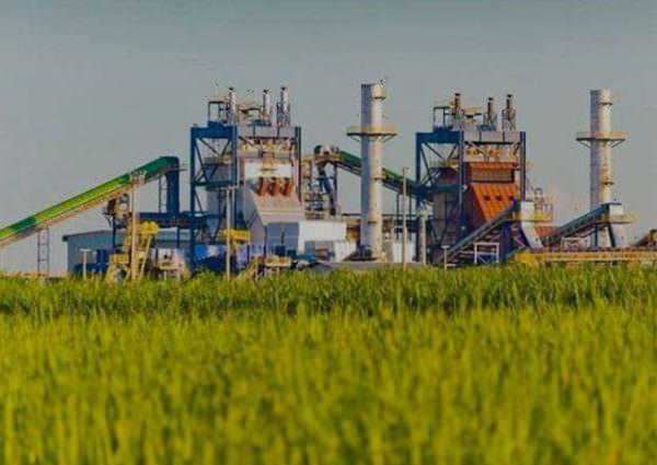Em ano pandêmico, produção de etanol cai e usinas fazem mais açúcar