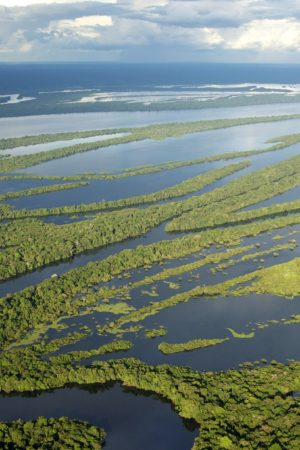 Força Nacional é autorizada a apoiar ICMBio na Amazônia