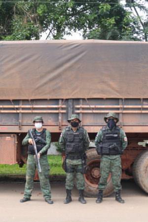 Operação apreende 135 metros cúbicos de madeira ilegal no interior do AM