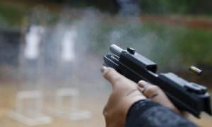 armas de fogo estatuto do desarmamento