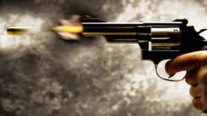 Arma de fogo, estatuto do desarmamento